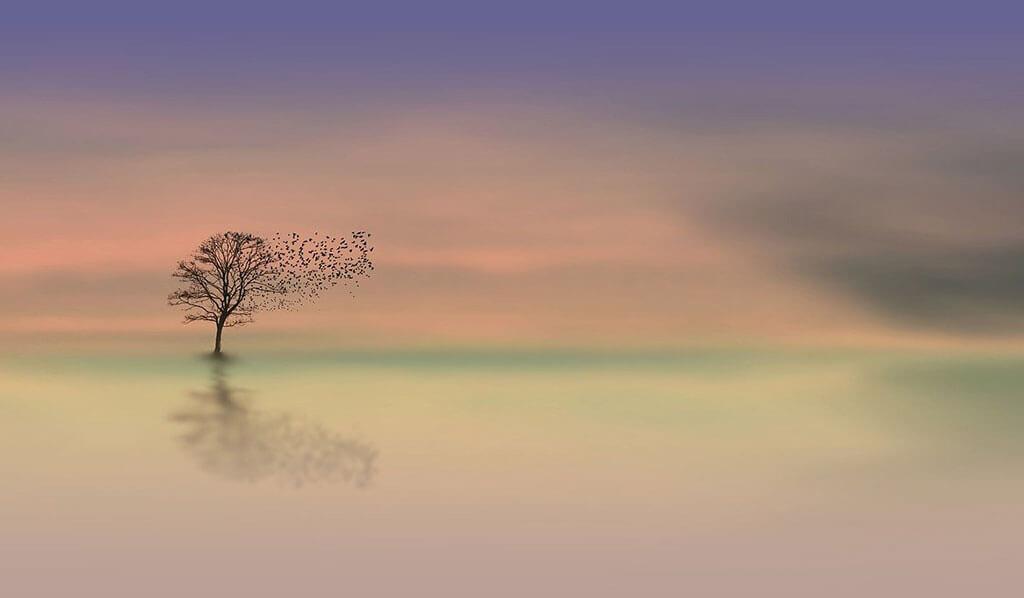 Медитация ден 16 - Георги Ненов - Свръхчовекът